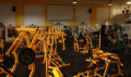 Legends Bodybuilding Gym: Haringey